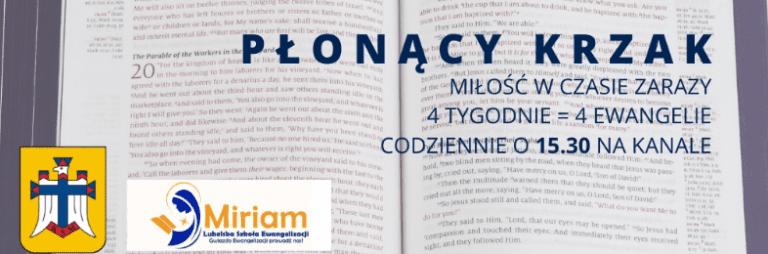 plonacy_krzak